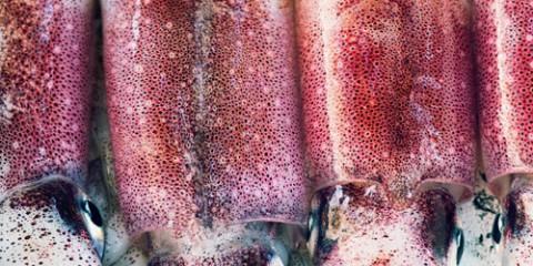 calamares-fresco-500x400