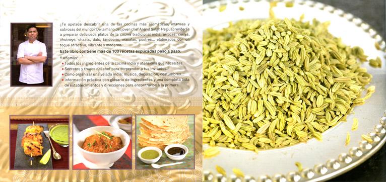 cocina-india-compo1
