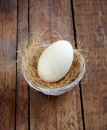 huevo-de-oca-370x450-