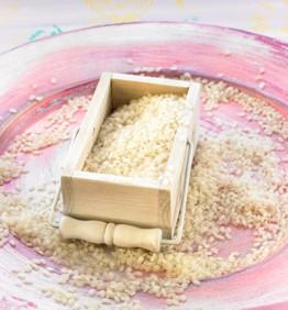 arroz-bomba-370x450