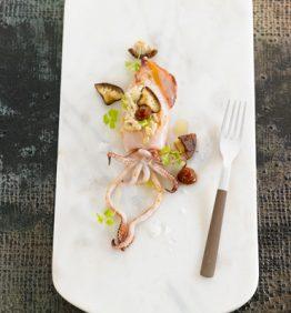 receta-calamarcito-de-playa-con-pollo-asado-salsa-tonkatsu-y-brotes-de-apio