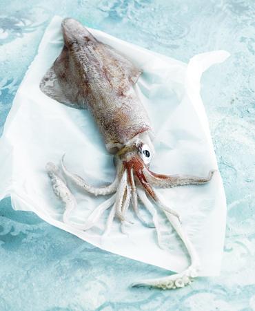 la-despensa-calamar