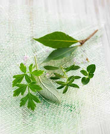 la-despensa-hierbas