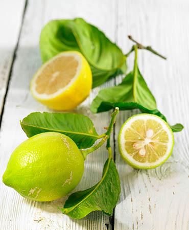 la-despensa-el-limón