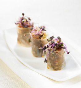 recetas-canelon-de-pato-y-cacahuetes