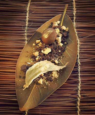 recetas-castana-de-foie-de-pato-y-chocolate-con-crujiente-de-mijo