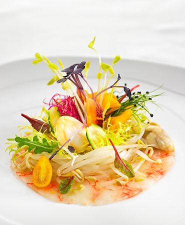 recetas-ensalada-de-primavera-con-brotes-y-germinados