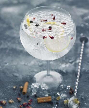 recetas-gin-tonic