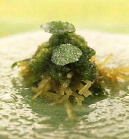 recetas-granizado-verde-de-manzana-con-menta-y-albahaca-cristalizadas