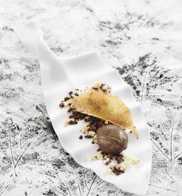 recetas-la-castana-de-galicia-y-su-hoja-con-tierra-helada-de-chocolate