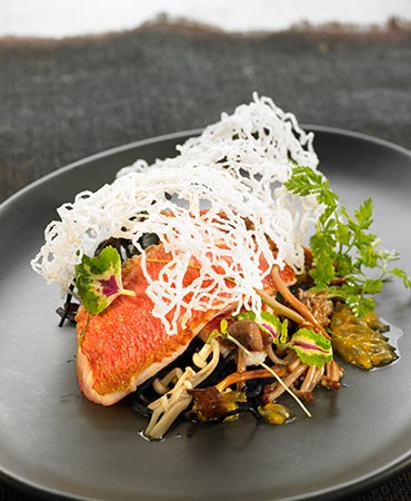 recetas-salmonetes-sobre-un-jardin-marino