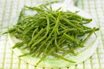 Salicornia-500x400