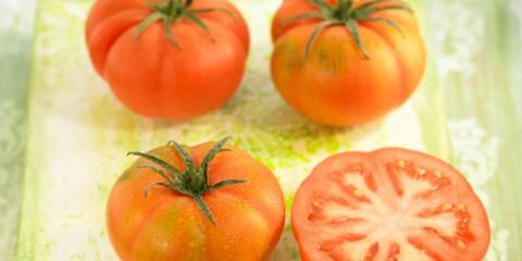 Tomate-raf-500x400