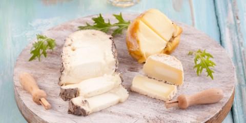 estilo-en-la-mesa-cortador-de-queso-miniatura-500x400