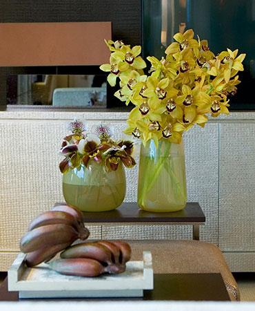 estilo en la mesa familia de orquideas