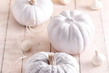 estilo-en-la-mesa-halloween-en-blanco-miniatura-500x400