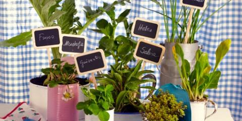 estilo-en-la-mesa-tu-jardin-en-casa-miniatura-500x400