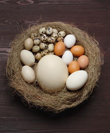 huevos-370x450