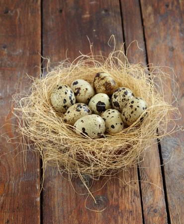 huevos-codorniz-370x450