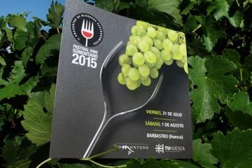 eventos-festival-de-vino-somontano-500x400