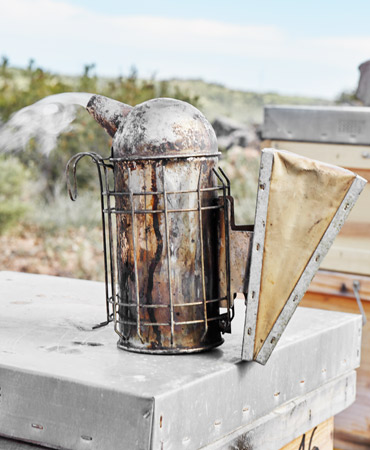 apicultura-ecologica-14-ahumado-370x450