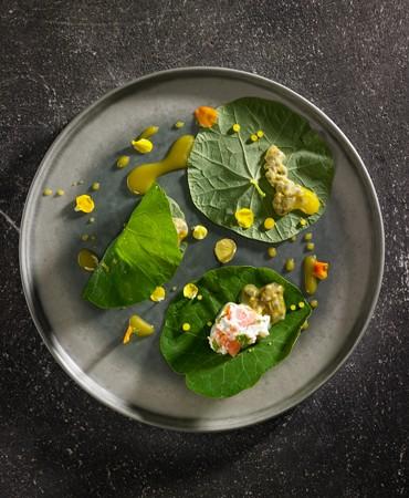 hojas-de-capuchina-con-salmon-ahumado-y-queso-fresco-
