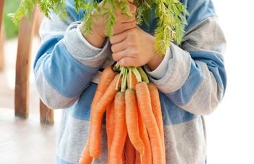 mesa-de-cultivo-para-ninos-zanahorias