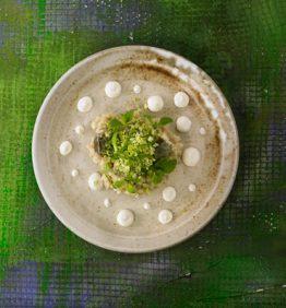 Rissoto-de-alcachofas-salicornia-y-escarcha-(salicornia-y-hierba-del-rocio)