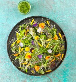 ensalada-de-brotes-tiernos-germinados-y-flores-con-pesto
