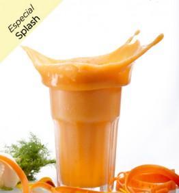 sopa-fria-de-zanahoria-especial