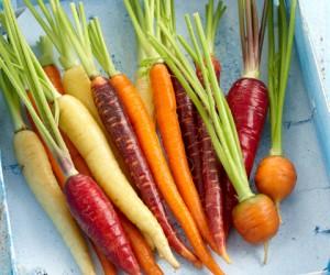 zanahorias-de-colores2